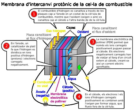 Cel·la de combustible  amb membrana d'intercanvi protònic